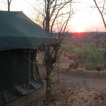 Hwange Walking Safari Camp